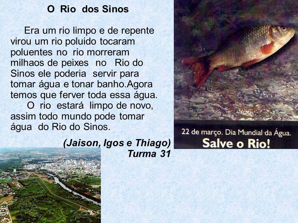 O Rio dos Sinos