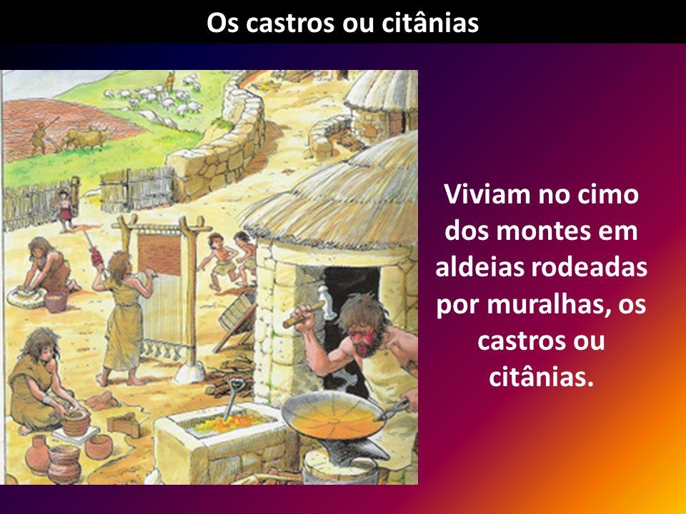 Os castros ou citânias Viviam no cimo dos montes em aldeias rodeadas por muralhas, os castros ou citânias.