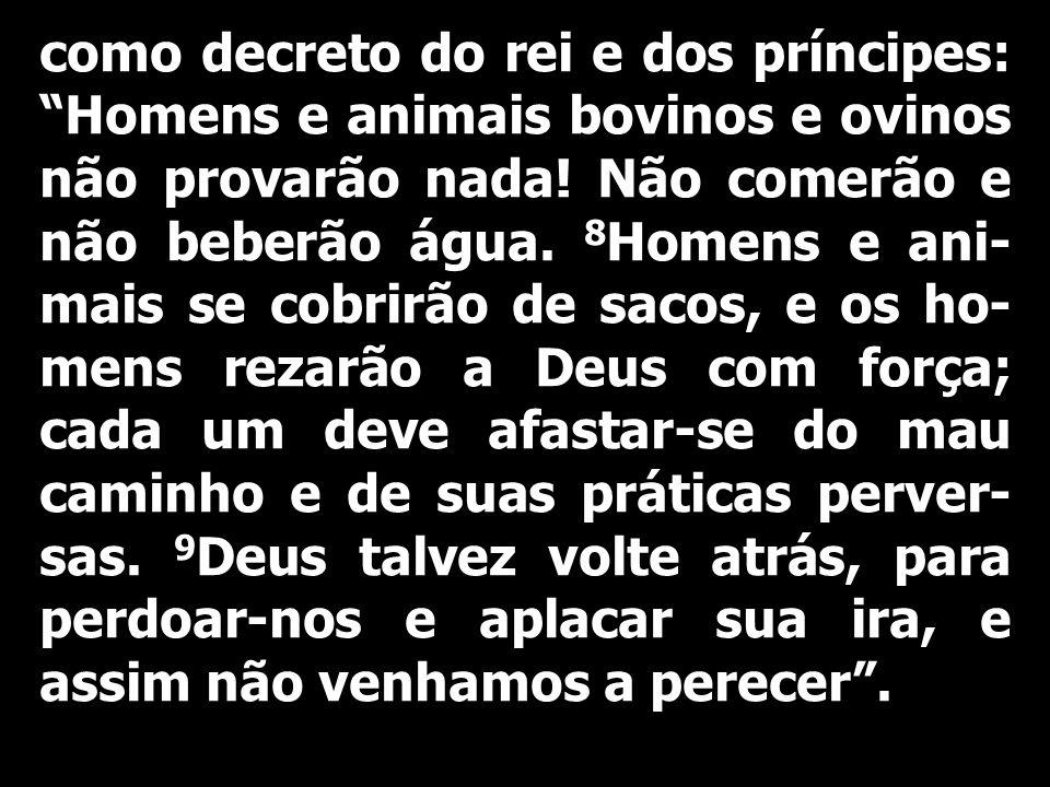 como decreto do rei e dos príncipes: Homens e animais bovinos e ovinos não provarão nada.