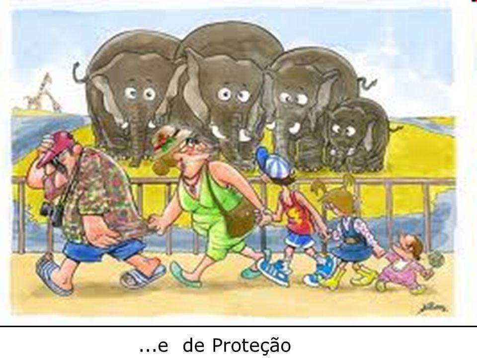 DE ...e de Proteção