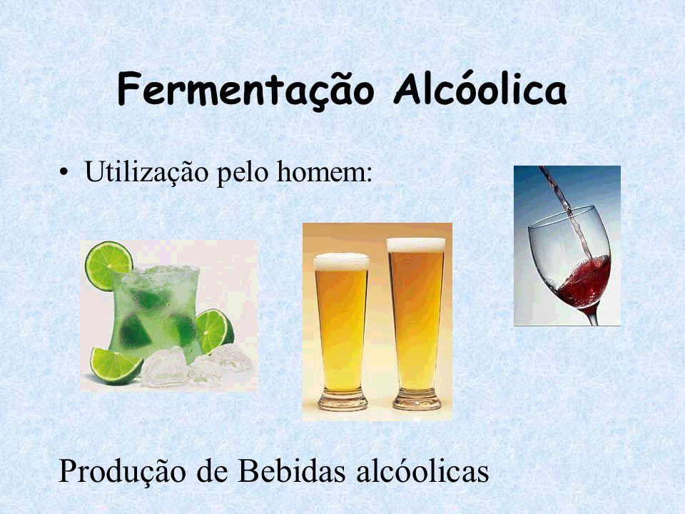 Fermentação Alcóolica