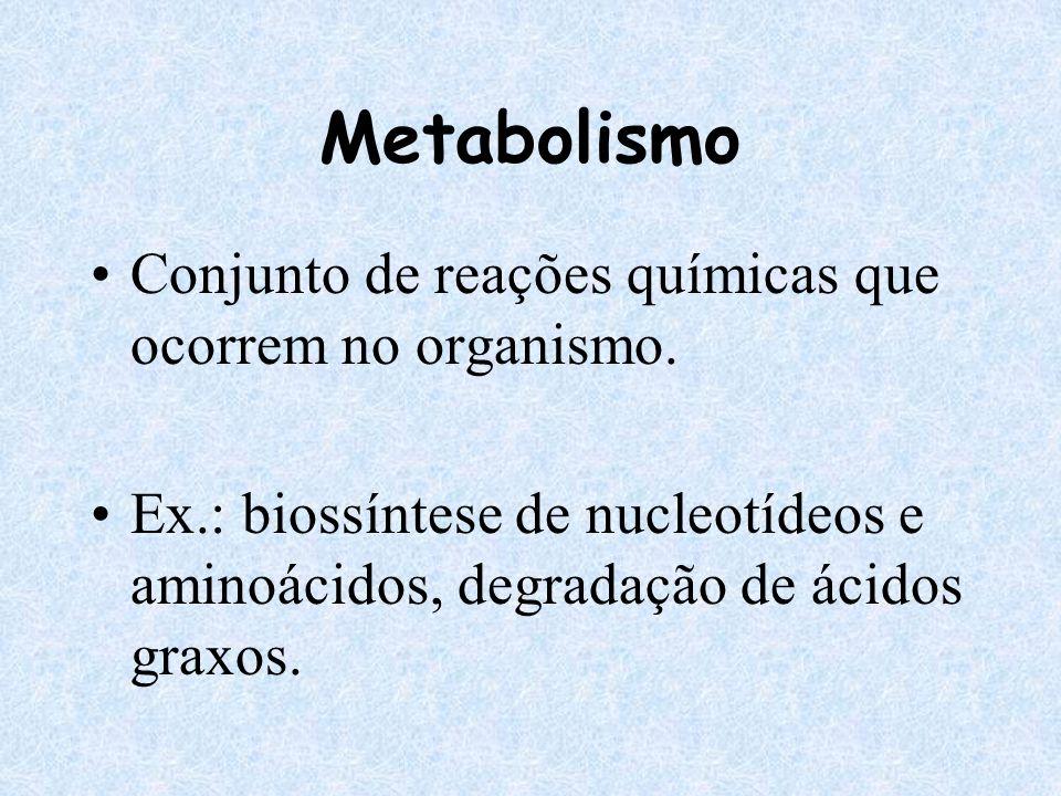 Metabolismo Conjunto de reações químicas que ocorrem no organismo.