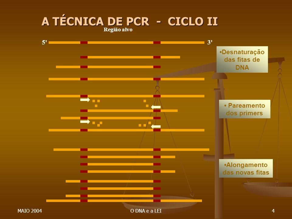 A TÉCNICA DE PCR - CICLO II