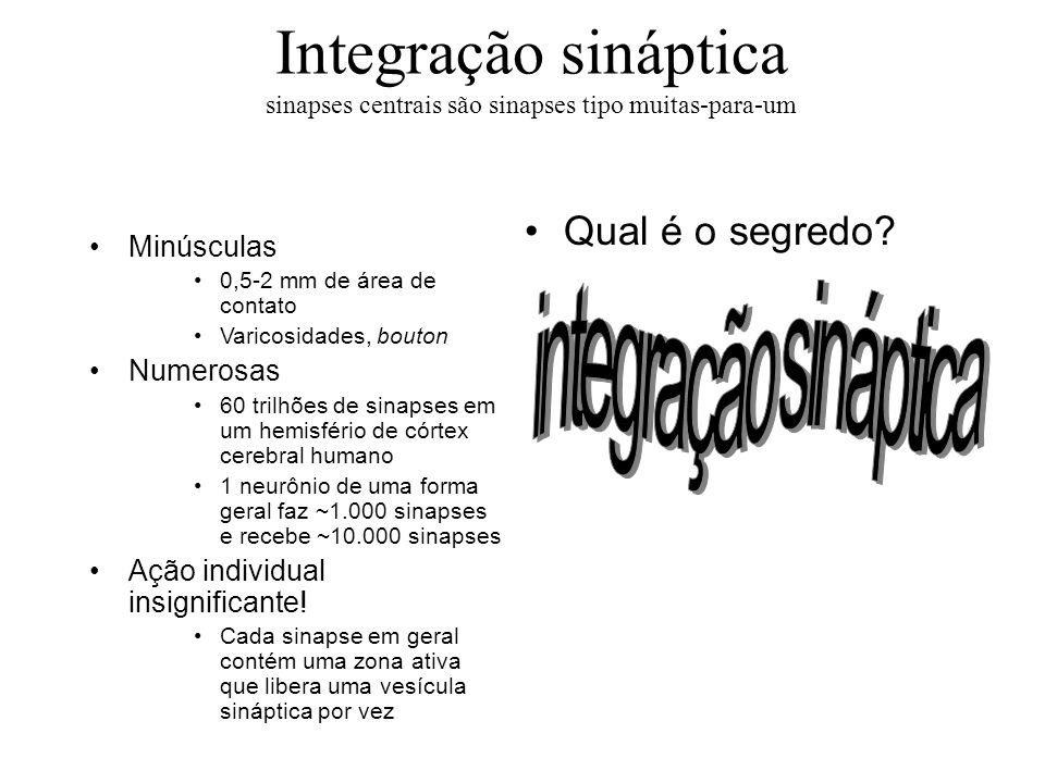 Integração sináptica sinapses centrais são sinapses tipo muitas-para-um