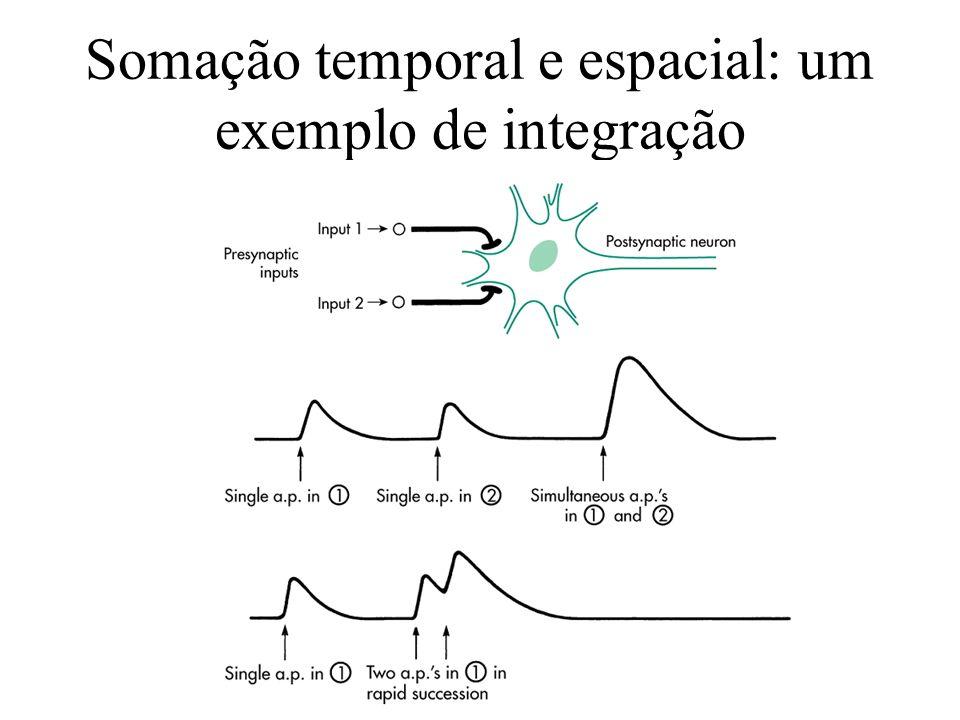 Somação temporal e espacial: um exemplo de integração