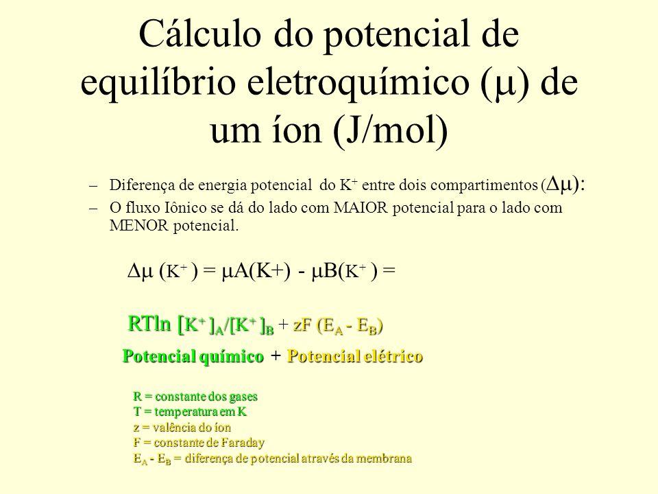 Cálculo do potencial de equilíbrio eletroquímico (m) de um íon (J/mol)