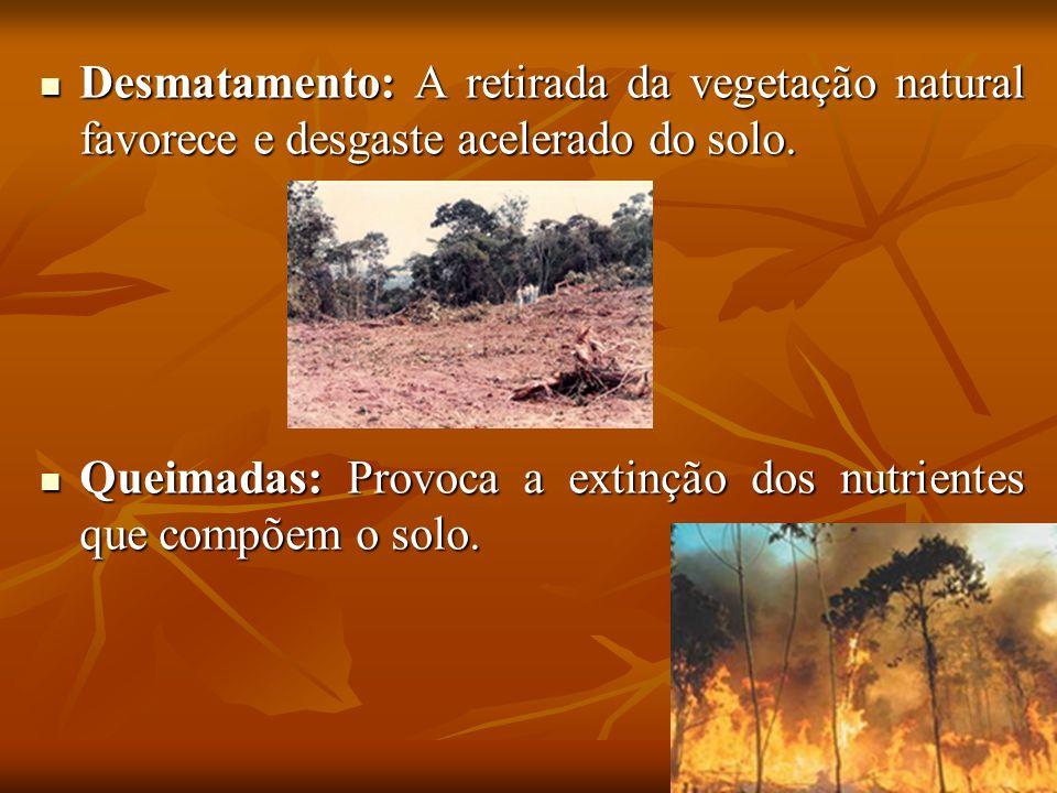Desmatamento: A retirada da vegetação natural favorece e desgaste acelerado do solo.