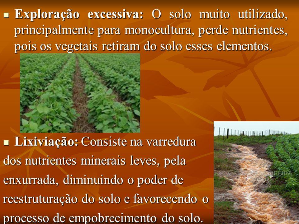 Exploração excessiva: O solo muito utilizado, principalmente para monocultura, perde nutrientes, pois os vegetais retiram do solo esses elementos.