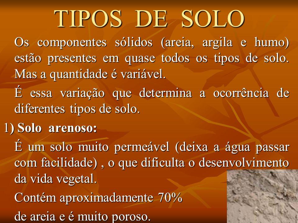 TIPOS DE SOLO Os componentes sólidos (areia, argila e humo) estão presentes em quase todos os tipos de solo. Mas a quantidade é variável.