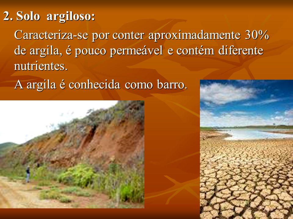 2. Solo argiloso: Caracteriza-se por conter aproximadamente 30% de argila, é pouco permeável e contém diferente nutrientes.