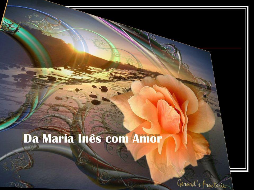 kunnen met de pracht van de ondergaande zon De kleuren van deze roos