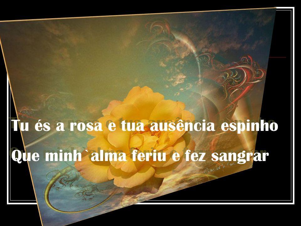 Tu és a rosa e tua ausência espinho
