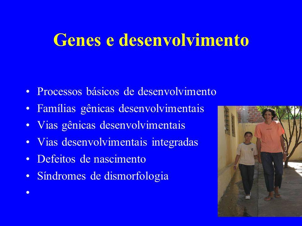 Genes e desenvolvimento