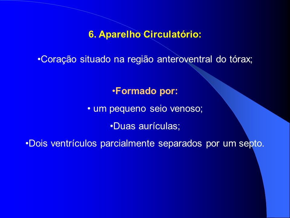 6. Aparelho Circulatório:
