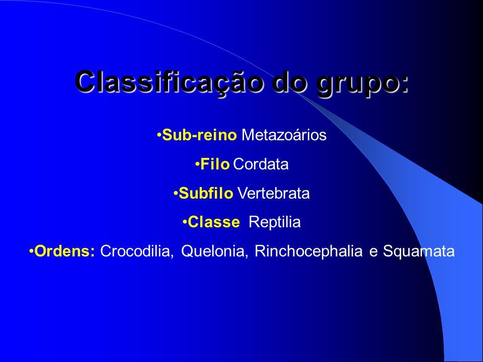 Classificação do grupo: