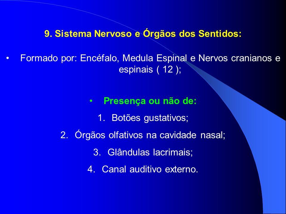 9. Sistema Nervoso e Órgãos dos Sentidos: