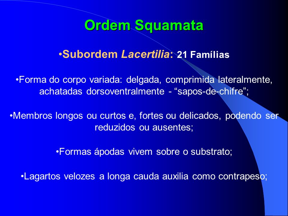 Subordem Lacertilia: 21 Famílias