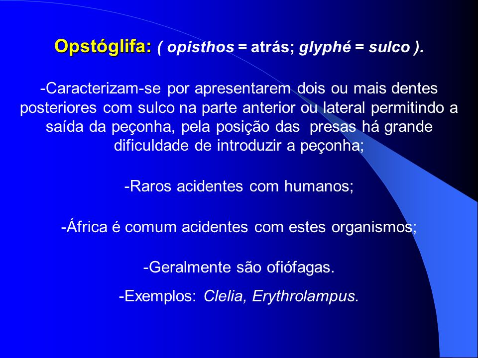 Opstóglifa: ( opisthos = atrás; glyphé = sulco ).