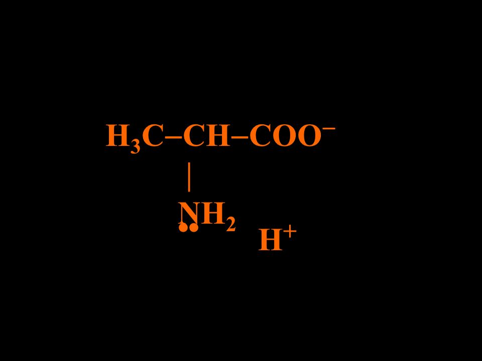 H3CCHCOO  NH2 •• H+