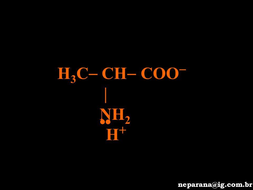 H3C CH COO  NH2 •• H+ neparana@ig.com.br