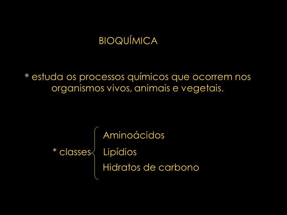 * estuda os processos químicos que ocorrem nos