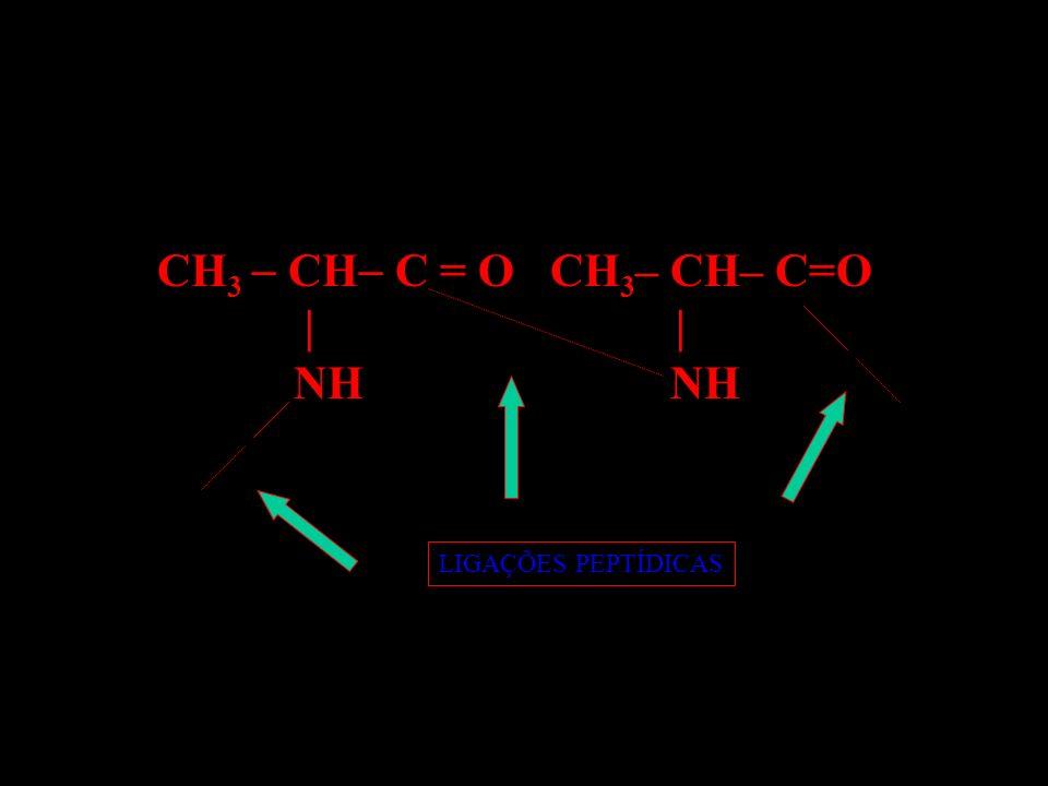 CH3  CH C = O CH3– CH– C=O | | NH NH.