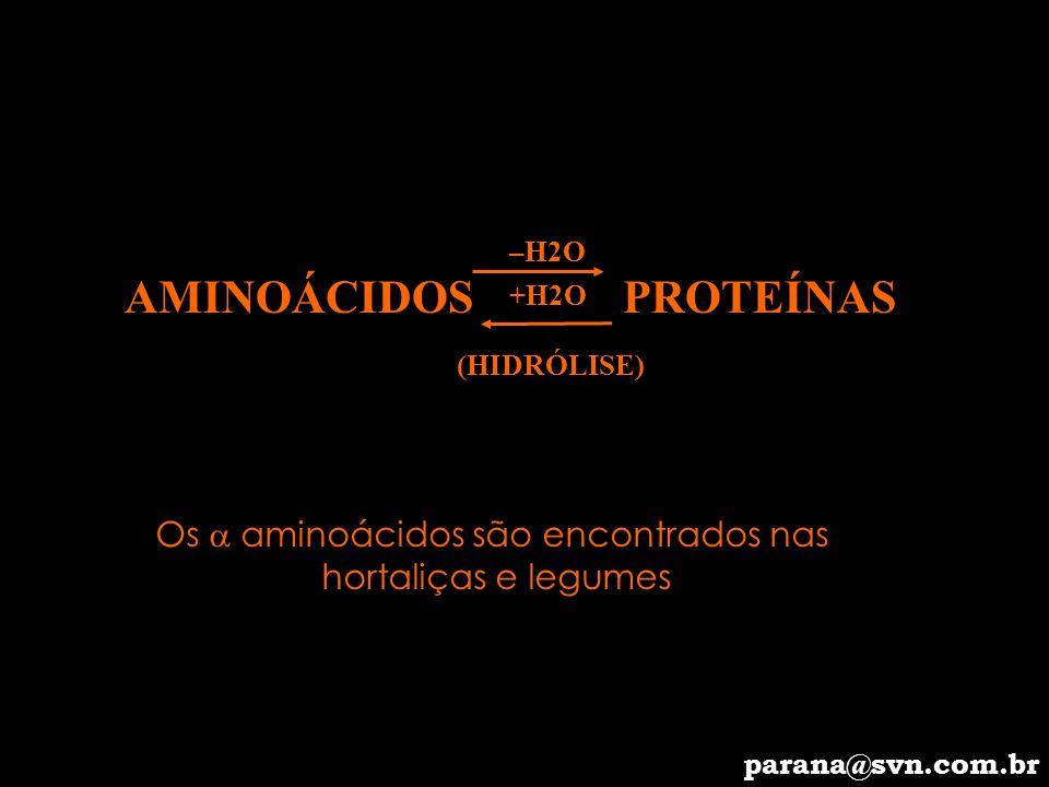 Os  aminoácidos são encontrados nas
