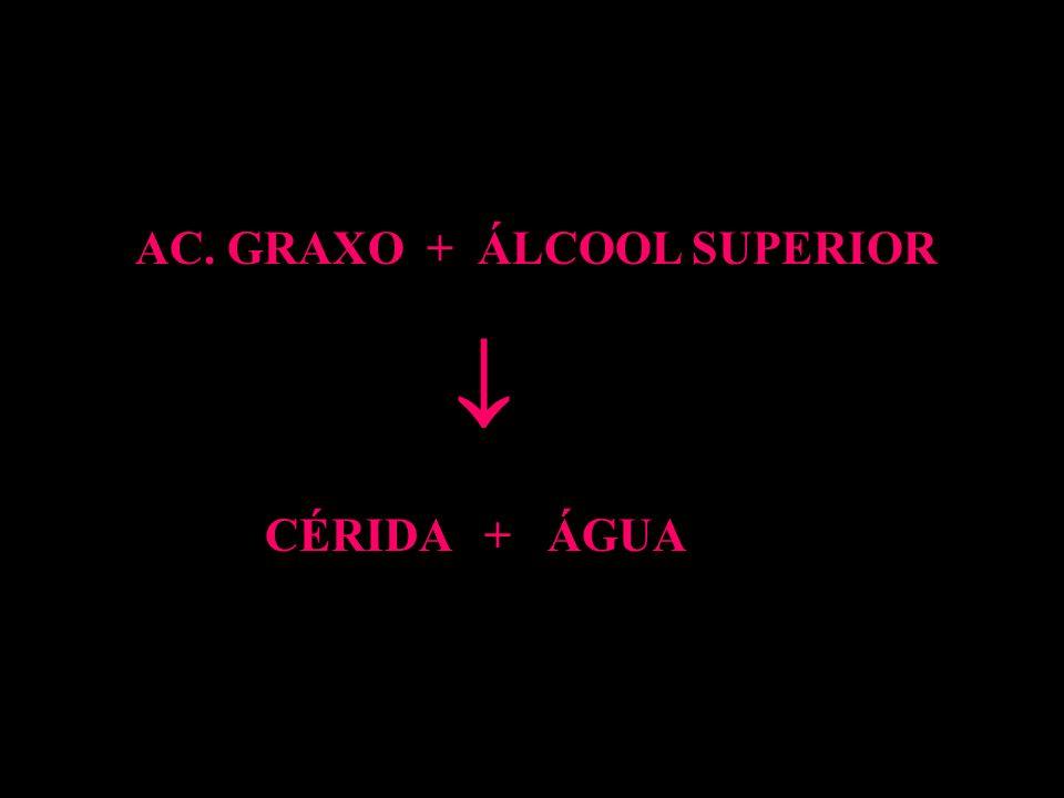 AC. GRAXO + ÁLCOOL SUPERIOR