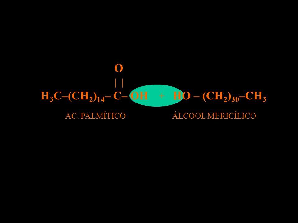 O H3C–(CH2)14– C– OH HO – (CH2)30–CH3 | | + AC. PALMÍTICO