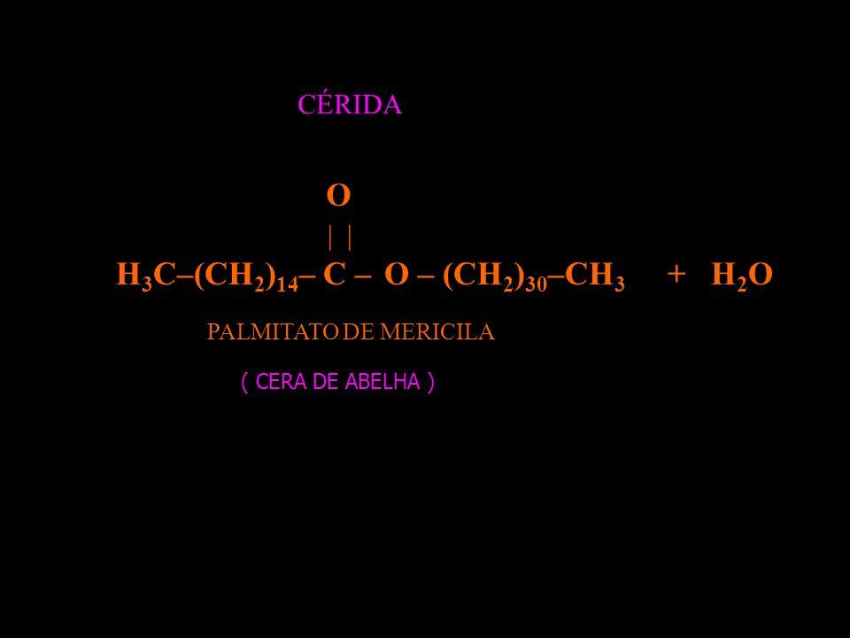 O H3C–(CH2)14– C – O – (CH2)30–CH3 + H2O CÉRIDA | |