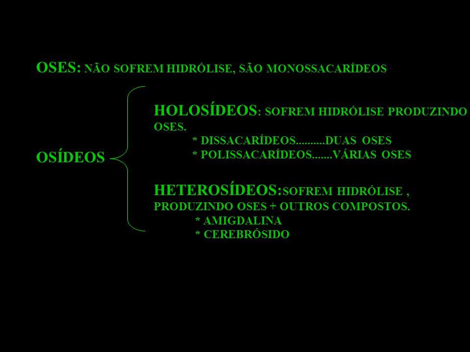 OSES: NÃO SOFREM HIDRÓLISE, SÃO MONOSSACARÍDEOS