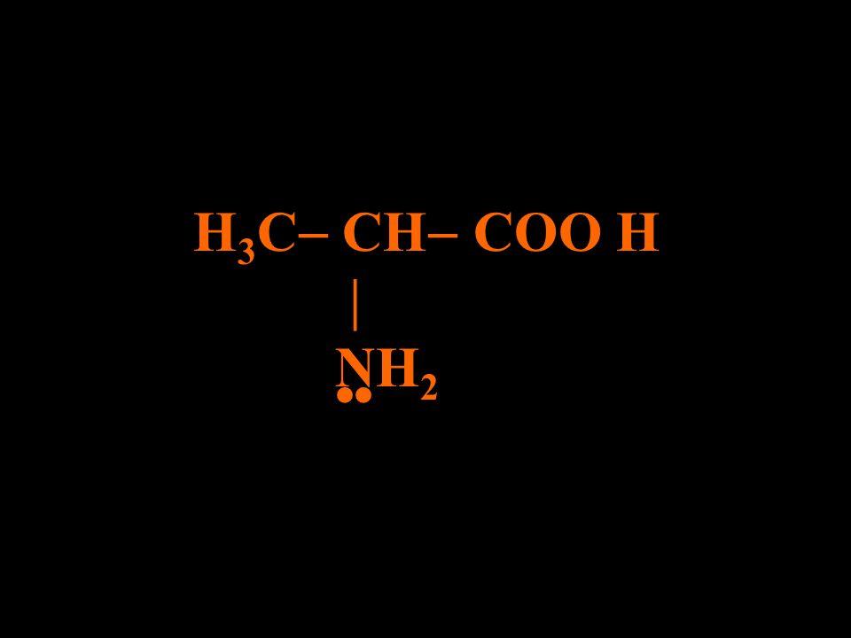 H3C CH COO H  NH2 ••
