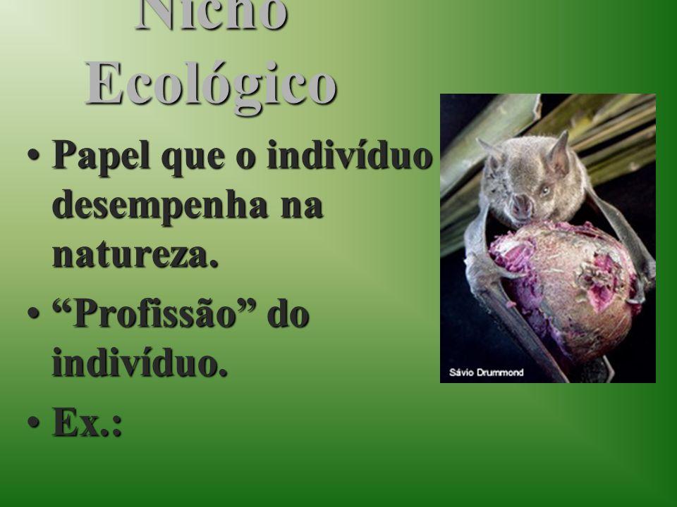 Nicho Ecológico Papel que o indivíduo desempenha na natureza.