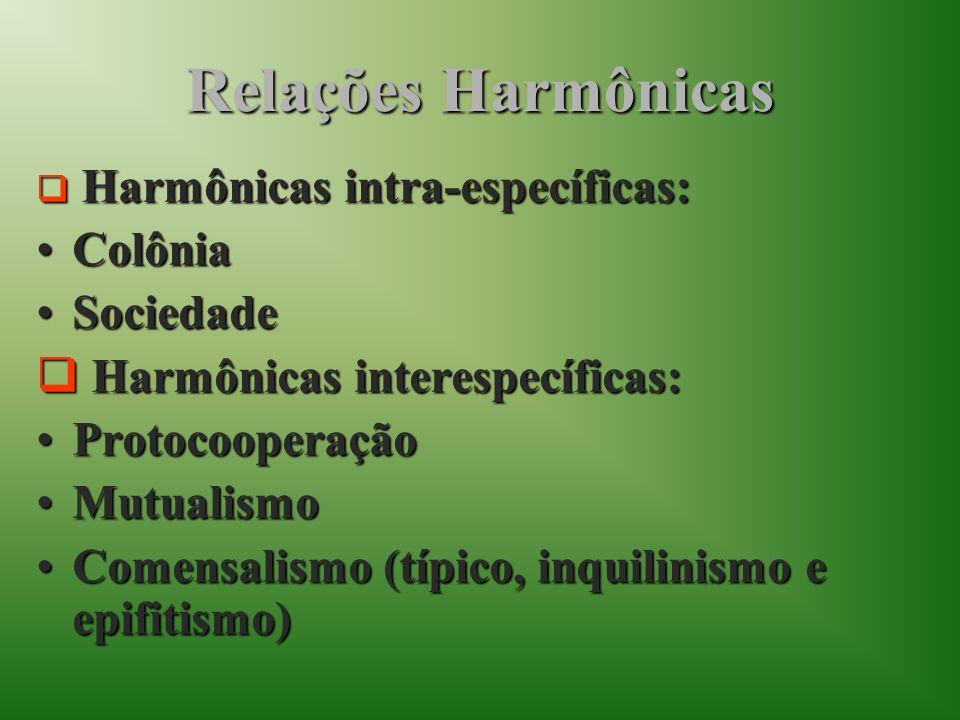 Relações Harmônicas Colônia Sociedade Harmônicas interespecíficas: