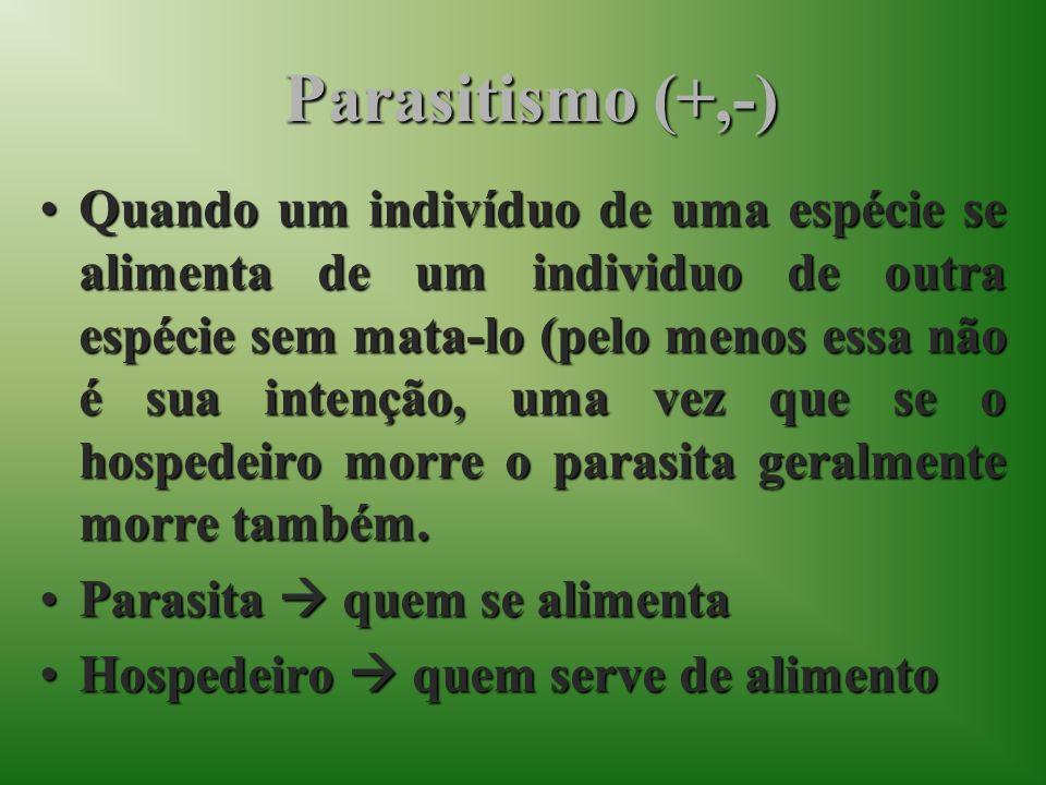 Parasitismo (+,-)