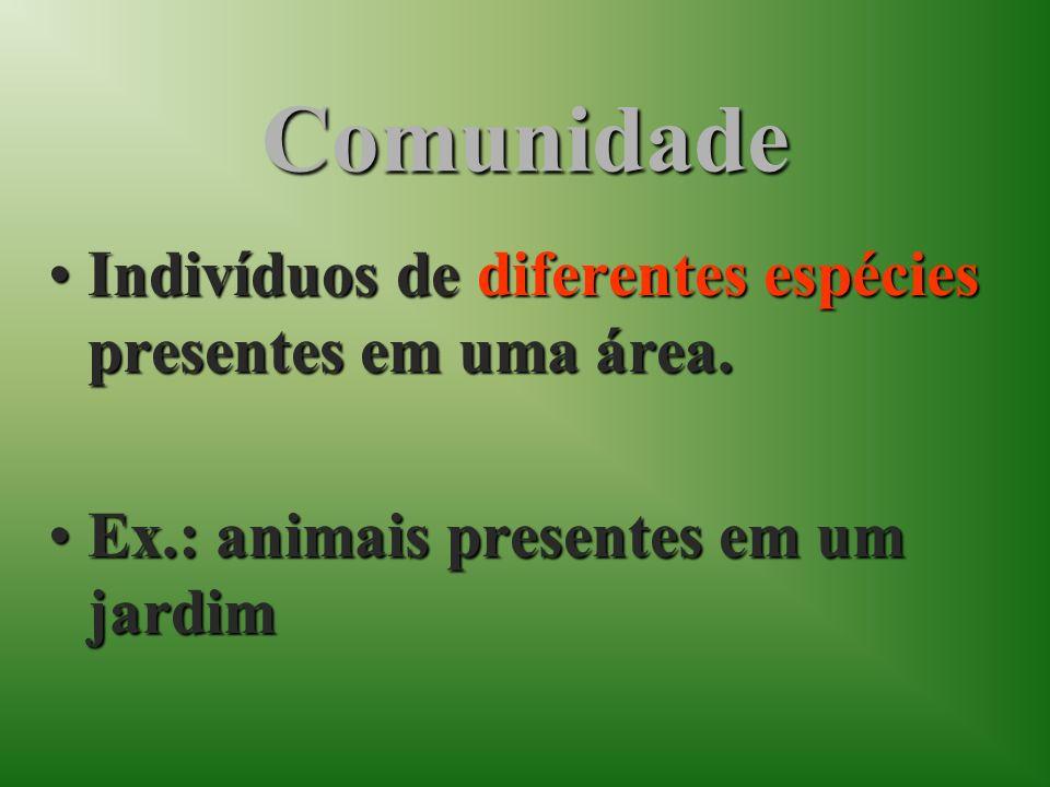 Comunidade Indivíduos de diferentes espécies presentes em uma área.
