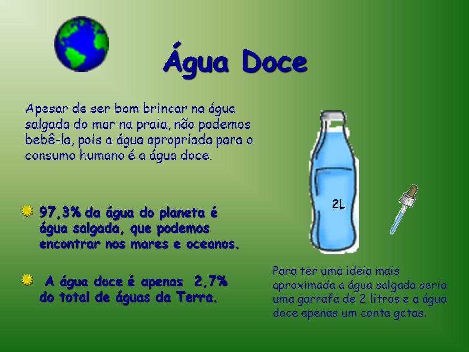 Água DoceApesar de ser bom brincar na água salgada do mar na praia, não podemos bebê-la, pois a água apropriada para o consumo humano é a água doce.