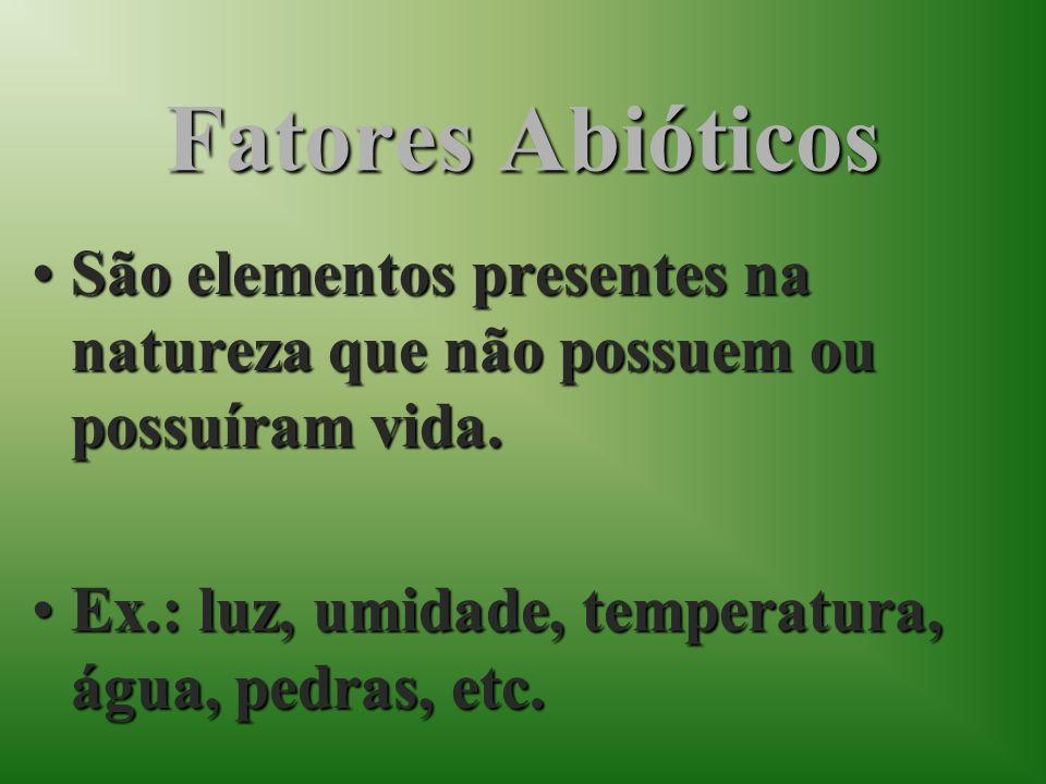 Fatores AbióticosSão elementos presentes na natureza que não possuem ou possuíram vida.