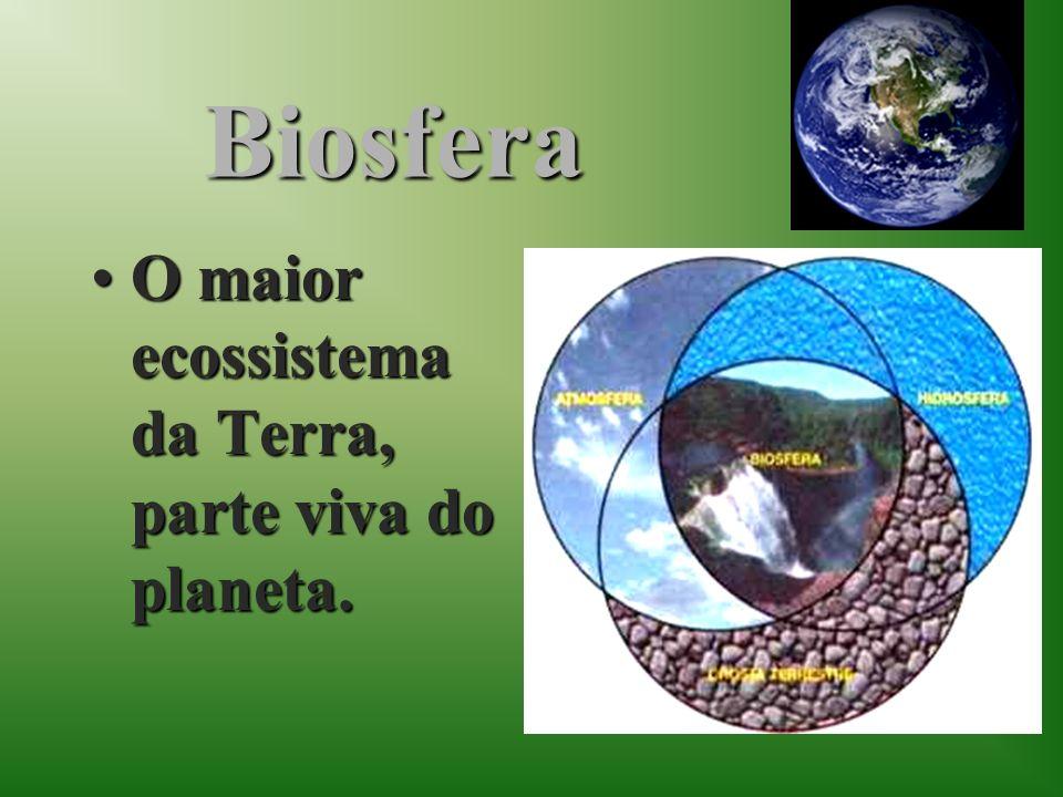 Biosfera O maior ecossistema da Terra, parte viva do planeta.