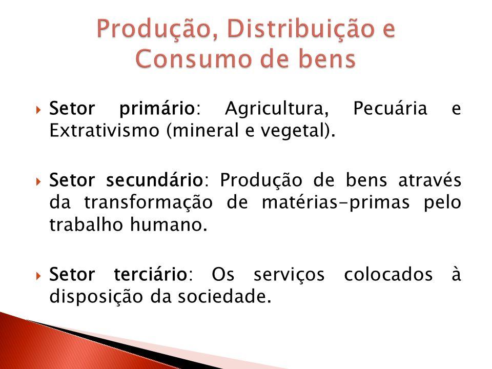 Produção, Distribuição e Consumo de bens