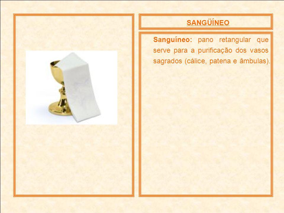 SANGÜÍNEOSanguíneo: pano retangular que serve para a purificação dos vasos sagrados (cálice, patena e âmbulas).