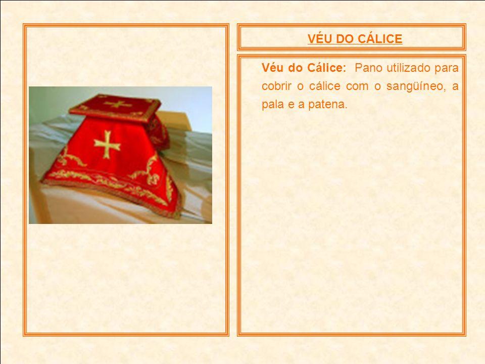 VÉU DO CÁLICEVéu do Cálice: Pano utilizado para cobrir o cálice com o sangüíneo, a pala e a patena.