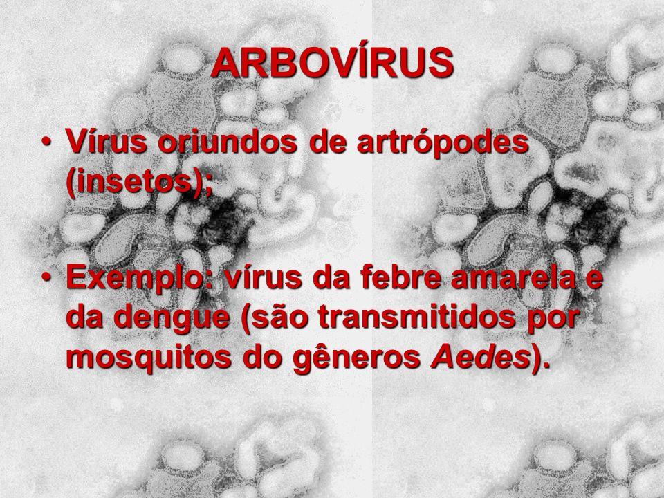 ARBOVÍRUS Vírus oriundos de artrópodes (insetos);