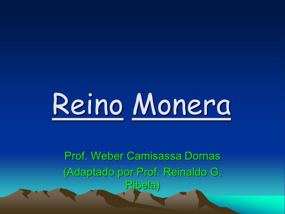 Prof. Weber Camisassa Dornas (Adaptado por Prof. Reinaldo G. Ribela)