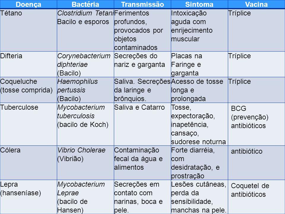 Doença Bactéria. Transmissão. Sintoma. Vacina. Tétano. Clostridium Tetani. Bacilo e esporos.