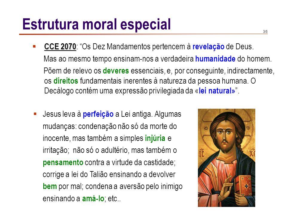 Estrutura moral especial