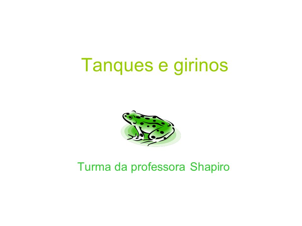 Turma da professora Shapiro