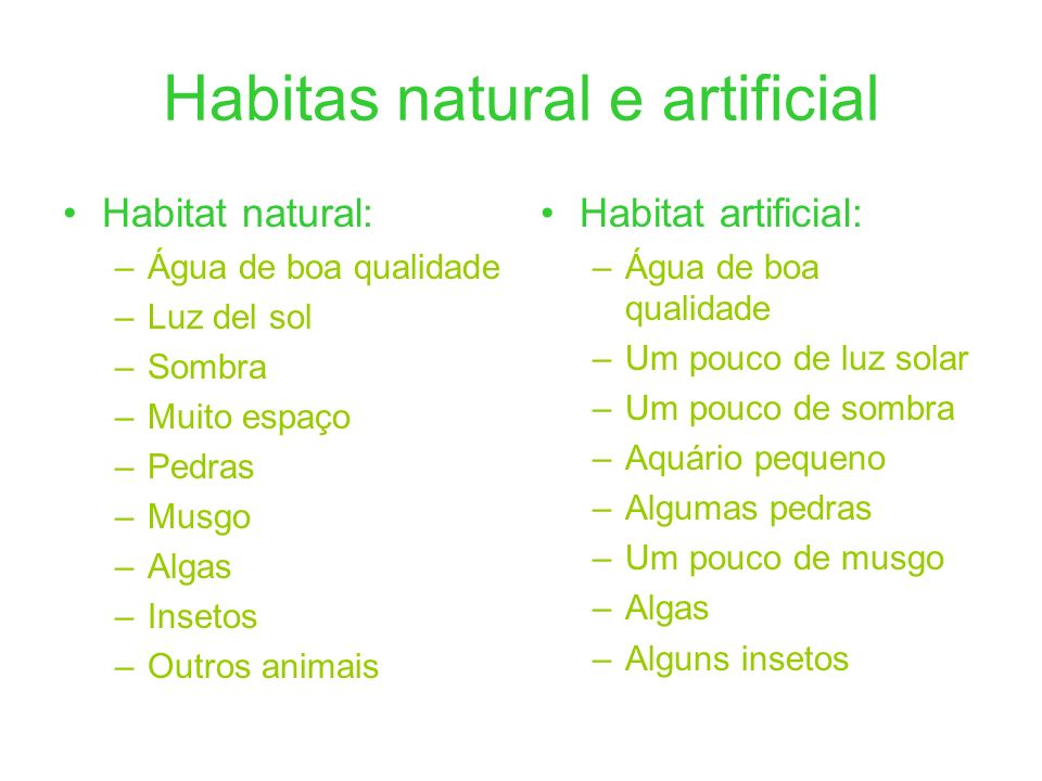 Habitas natural e artificial