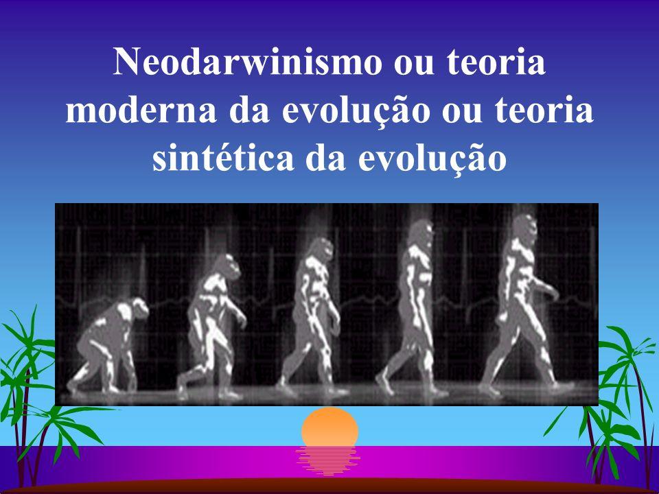 Neodarwinismo ou teoria moderna da evolução ou teoria sintética da evolução