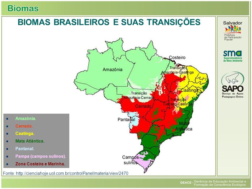 Biomas Brasileiros e Suas Transições